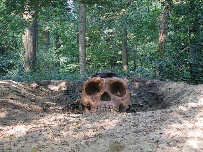 Ecce-Homo-Erectus-(front)-Odapark